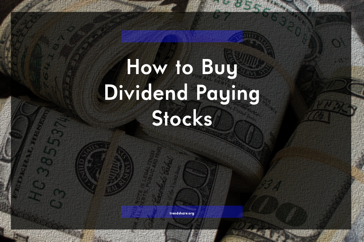 how to make money from stock dividends