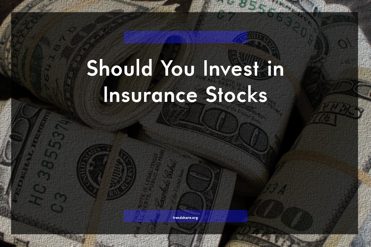 Should You Invest in Insurance Stocks?