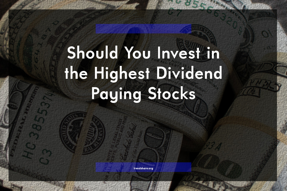 Should You Invest in the Highest Dividend Paying Stocks?