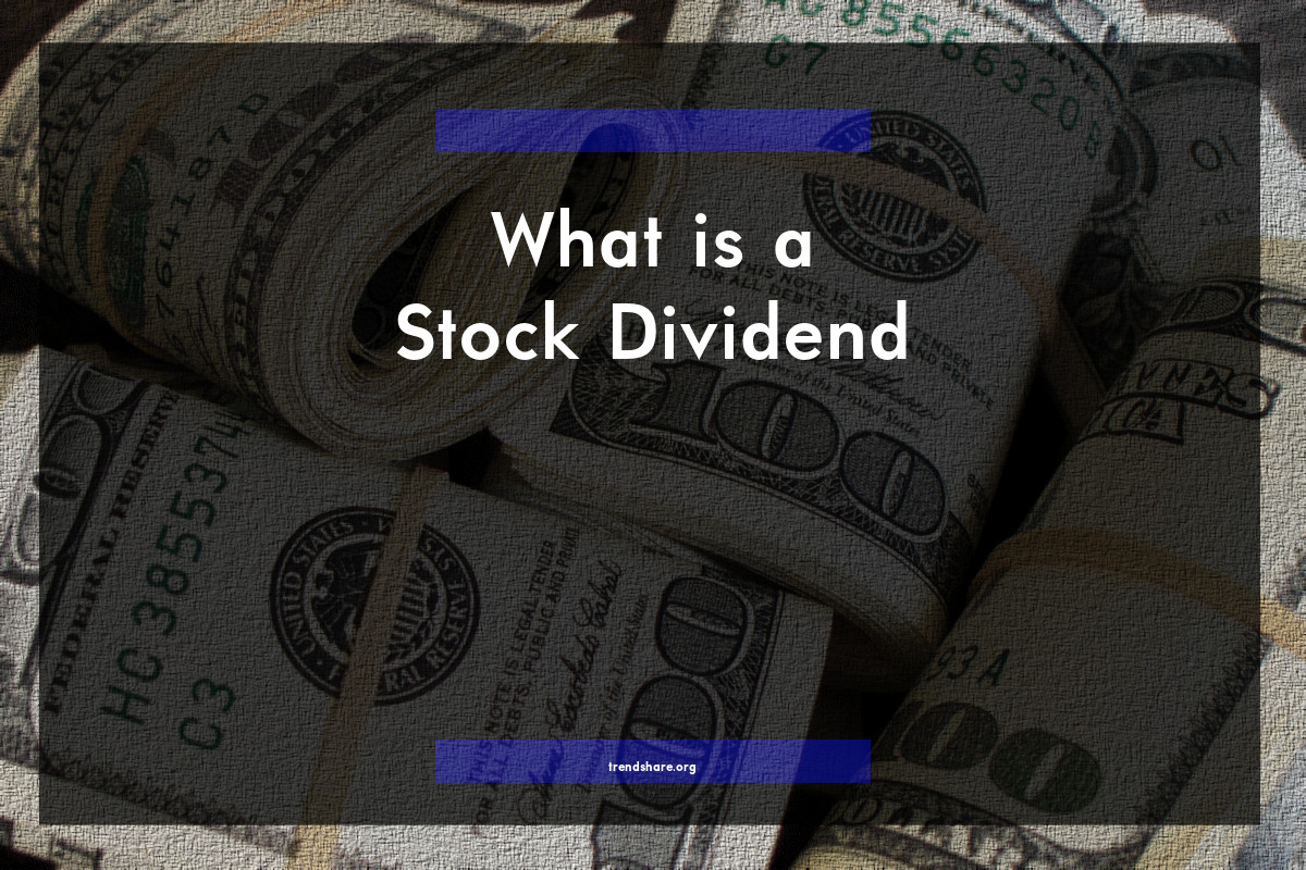What is a Stock Dividend?