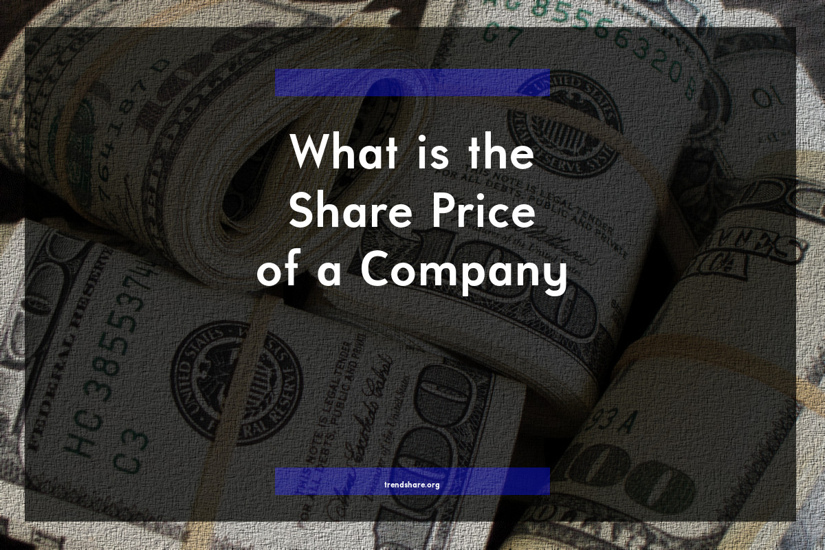 What is the Share Price of a Company?