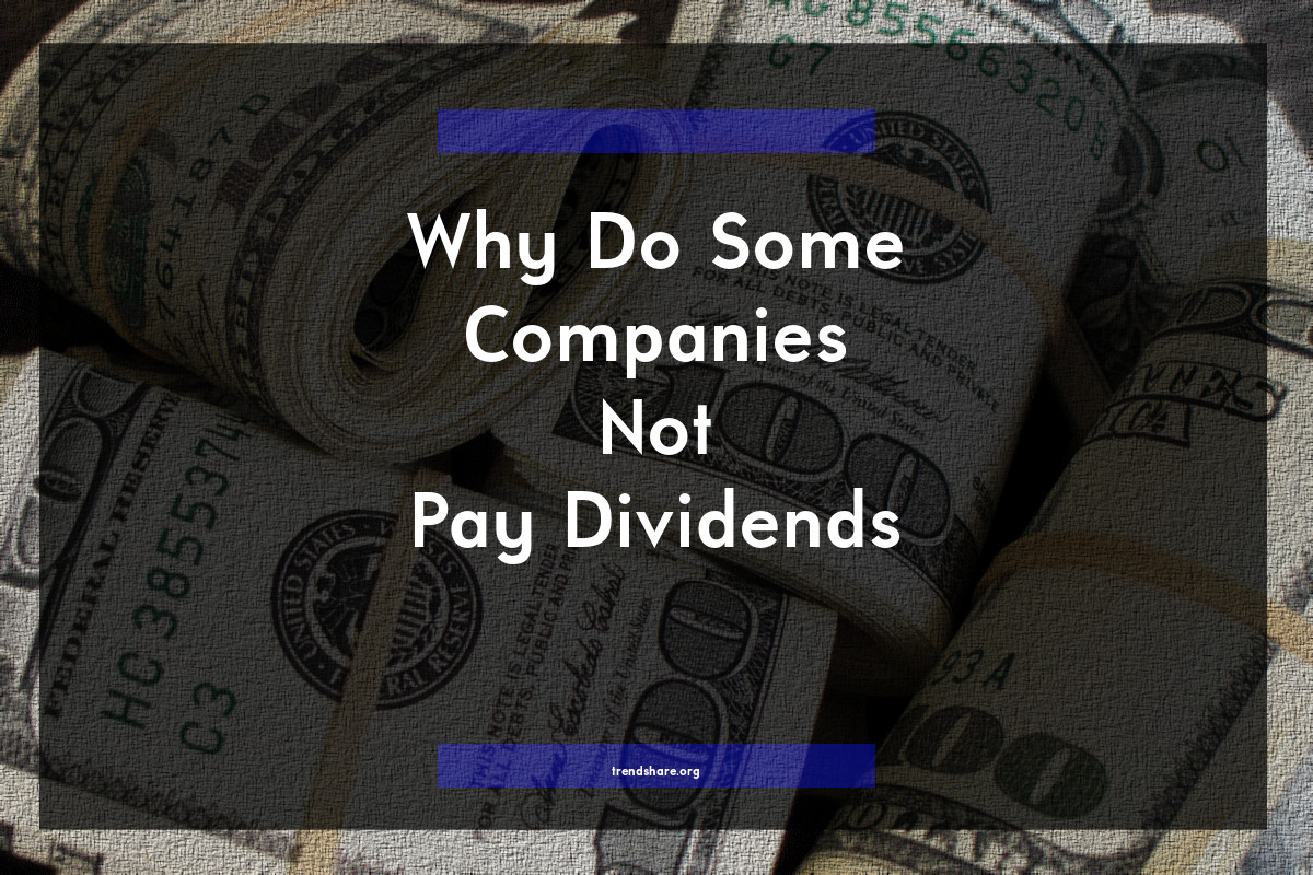 Why Do Some Companies Not Pay Dividends?